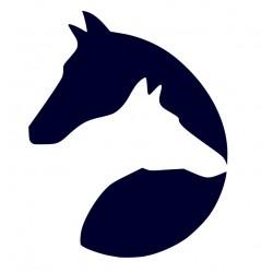 Samolepka na auto-symboly koně