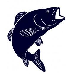 Nálepka na auto pro rybáře- kapr- rybaření 01