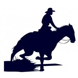 Samolepka na auto-jízda na koni 09