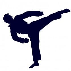 Samolepka na auto s motivem karate 03