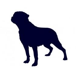 Samolepka na auto - pes v autě - pes 29
