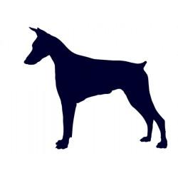 Samolepka na auto - pes v autě - pes 31