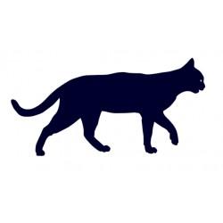 Samolepka na auto - kočka 07