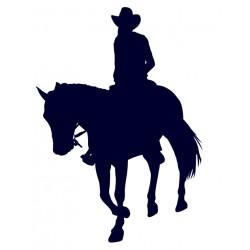 Samolepka na auto-jízda na koni 06